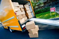 Movers 5 Salvia CT. W. Homosassa FL 34446 (813) 379-2642