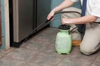 Pest Control in Marlton, NJ, Advanced Termite and Pest Control